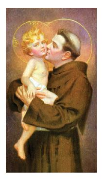 St. Anthony - Laminated Cards