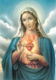 Immaculate Heart of Mary Pack of 10