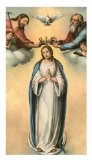 Queen of Peace - Laminated Cards