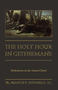 Holy Hour in Gethsemani - Meditations on the Anima Christi
